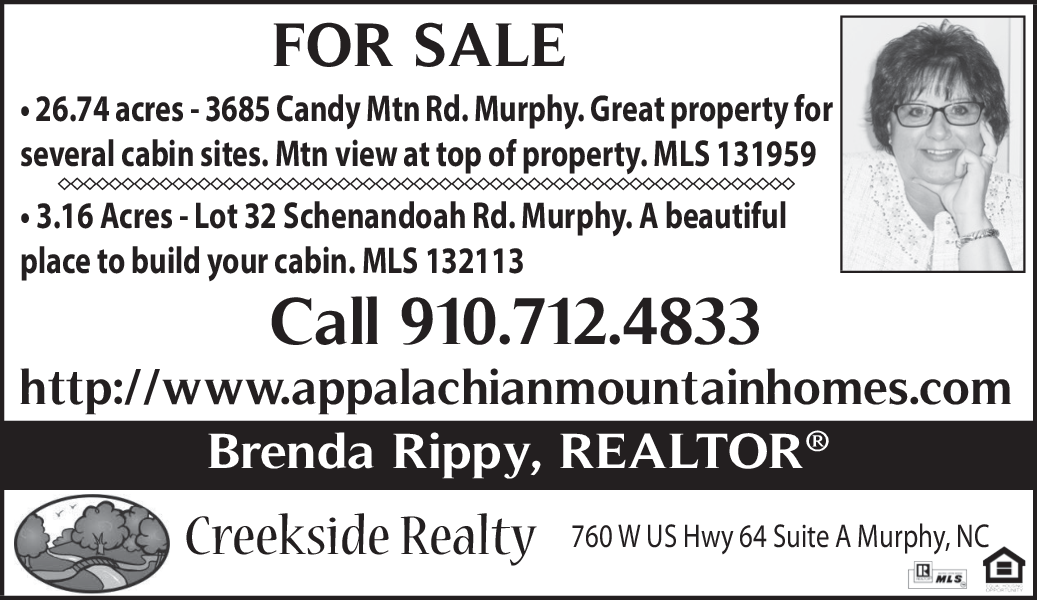 Great Property For Several Cabin Sites in Murphy, NC, Real Estate